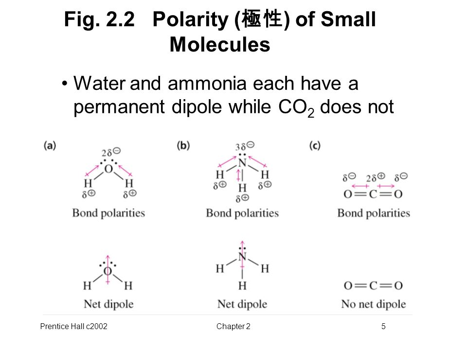 Fig. 2.2 Polarity (極性) of Small Molecules
