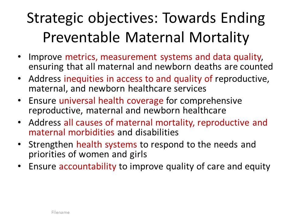 Strategic objectives: Towards Ending Preventable Maternal Mortality