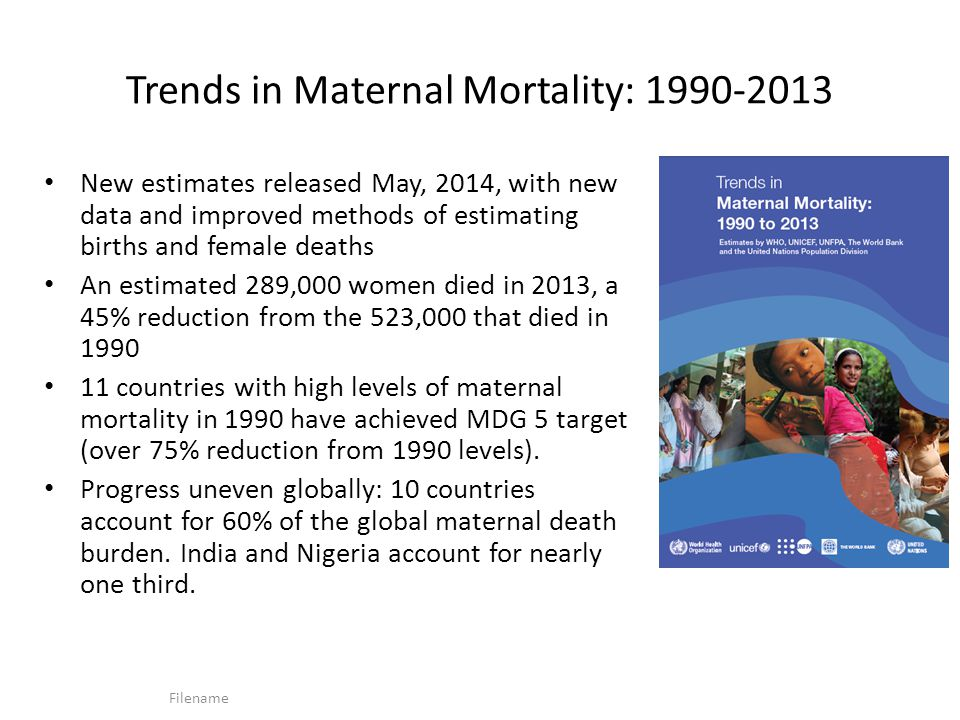 Trends in Maternal Mortality: 1990-2013