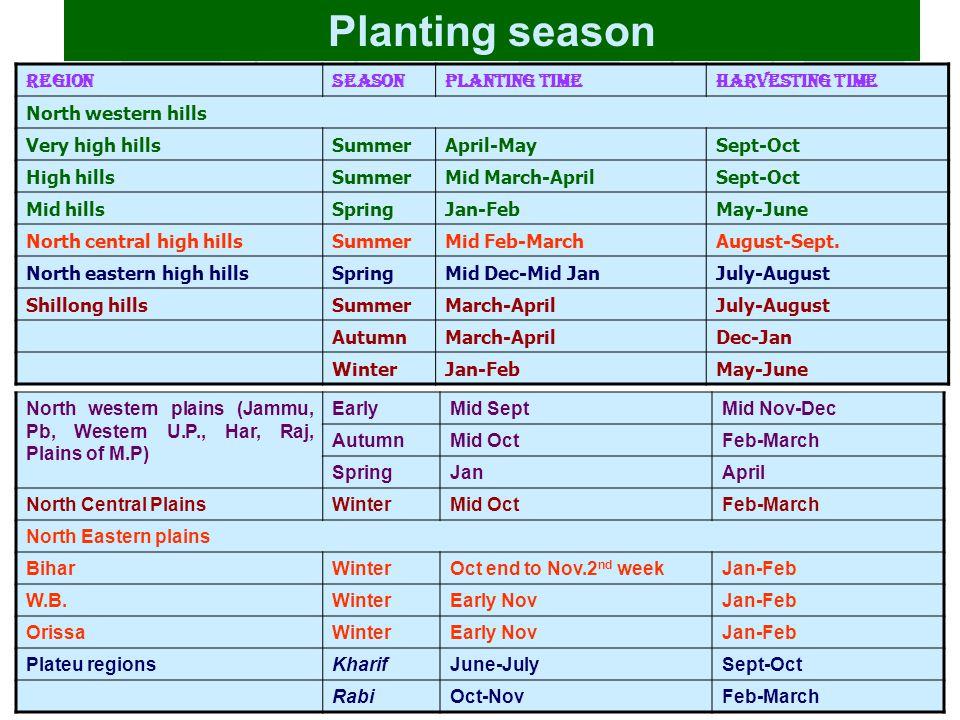Planting season Contd……. Region Season Planting Time Harvesting Time