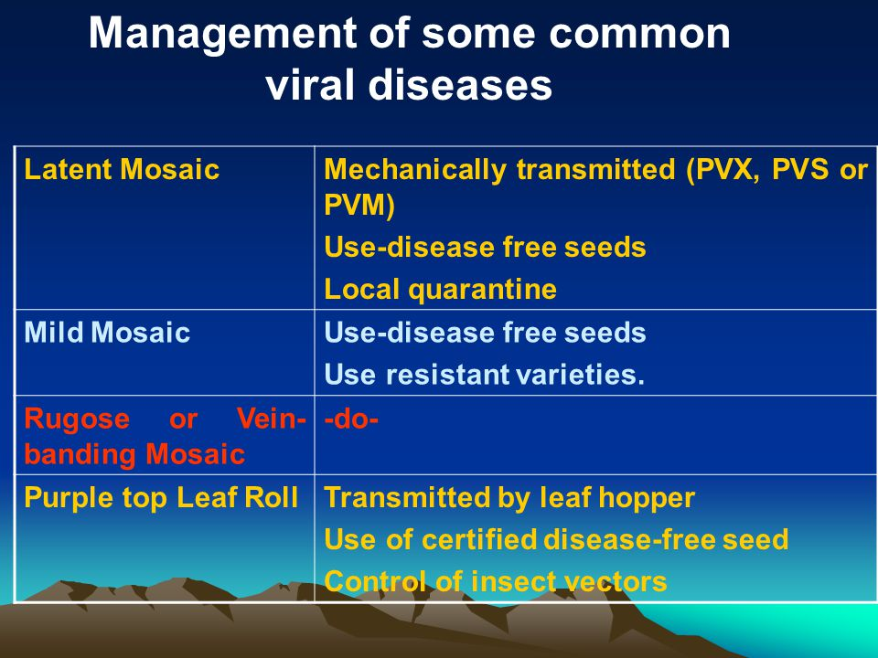 Management of some common viral diseases