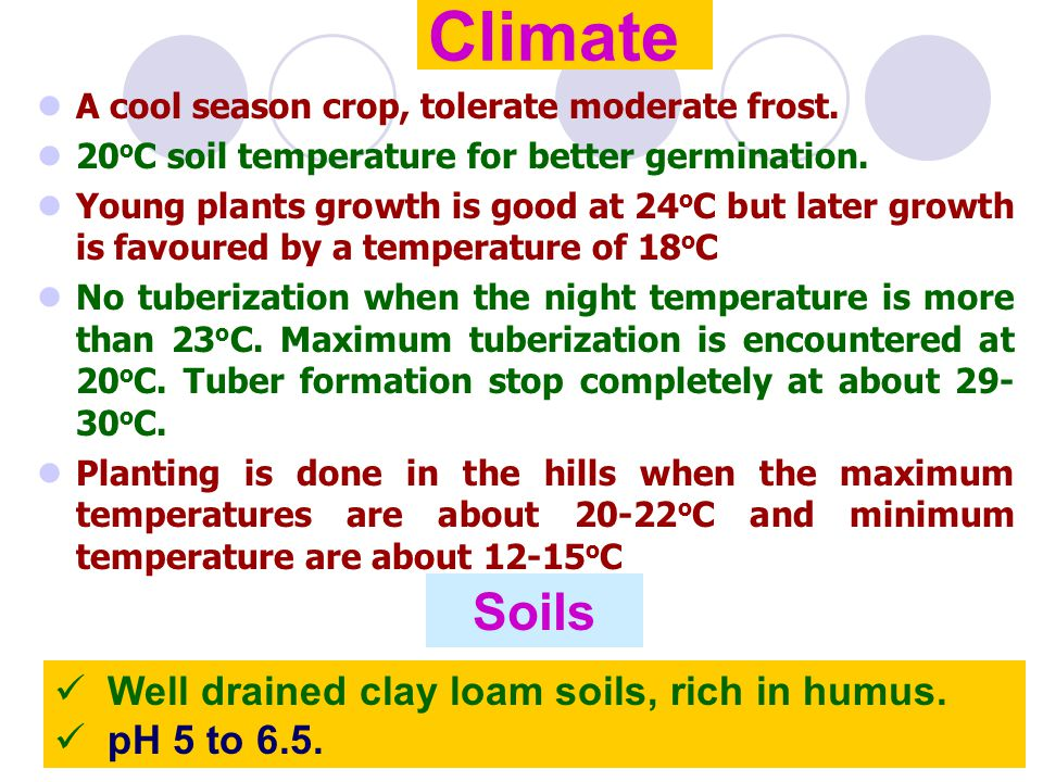Climate Soils Well drained clay loam soils, rich in humus.