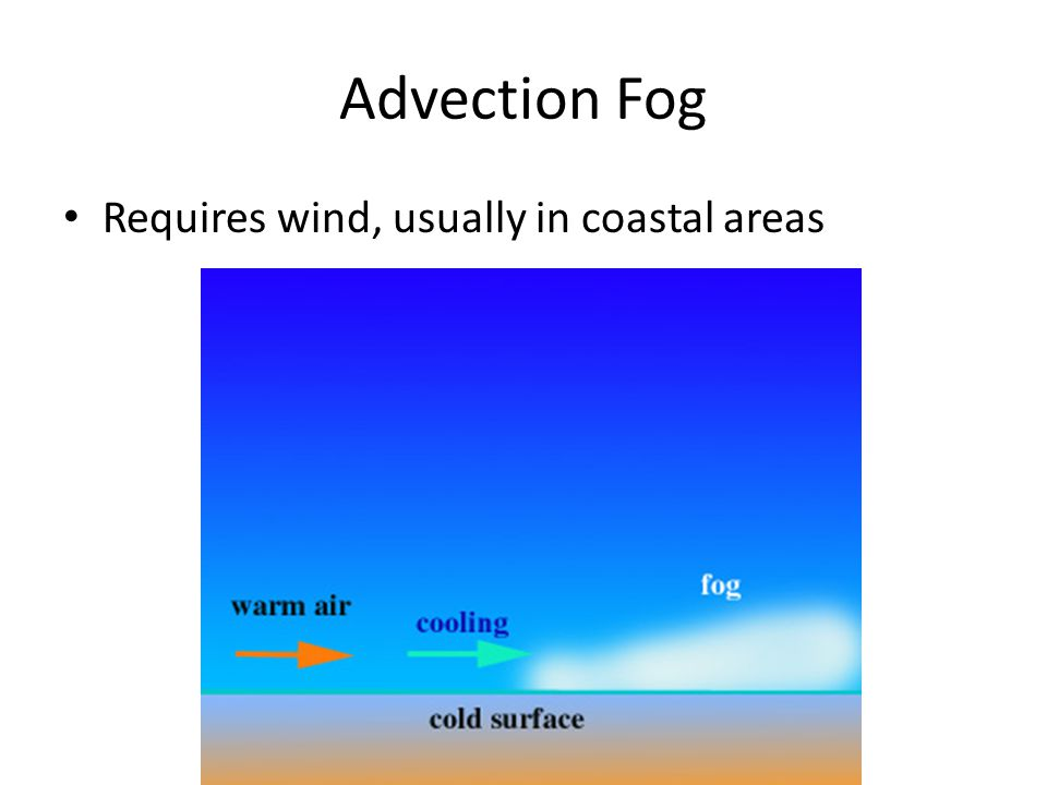 Advection Fog Requires wind, usually in coastal areas