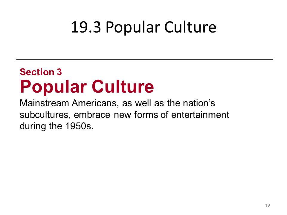 Popular Culture 19.3 Popular Culture Section 3