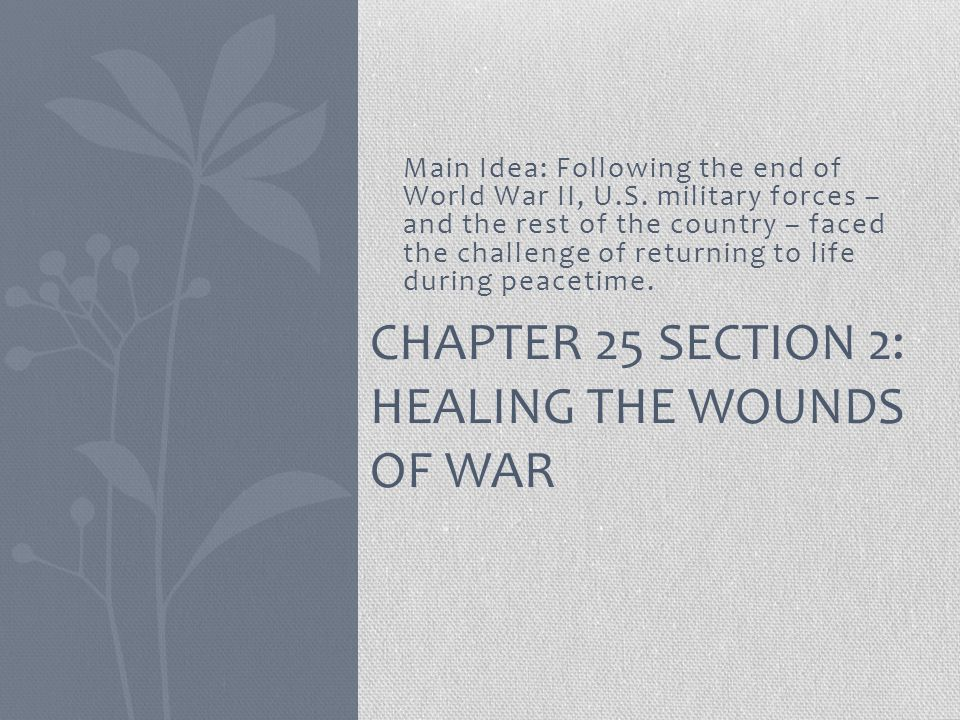 Chapter 25 Section 2: Healing the Wounds of War
