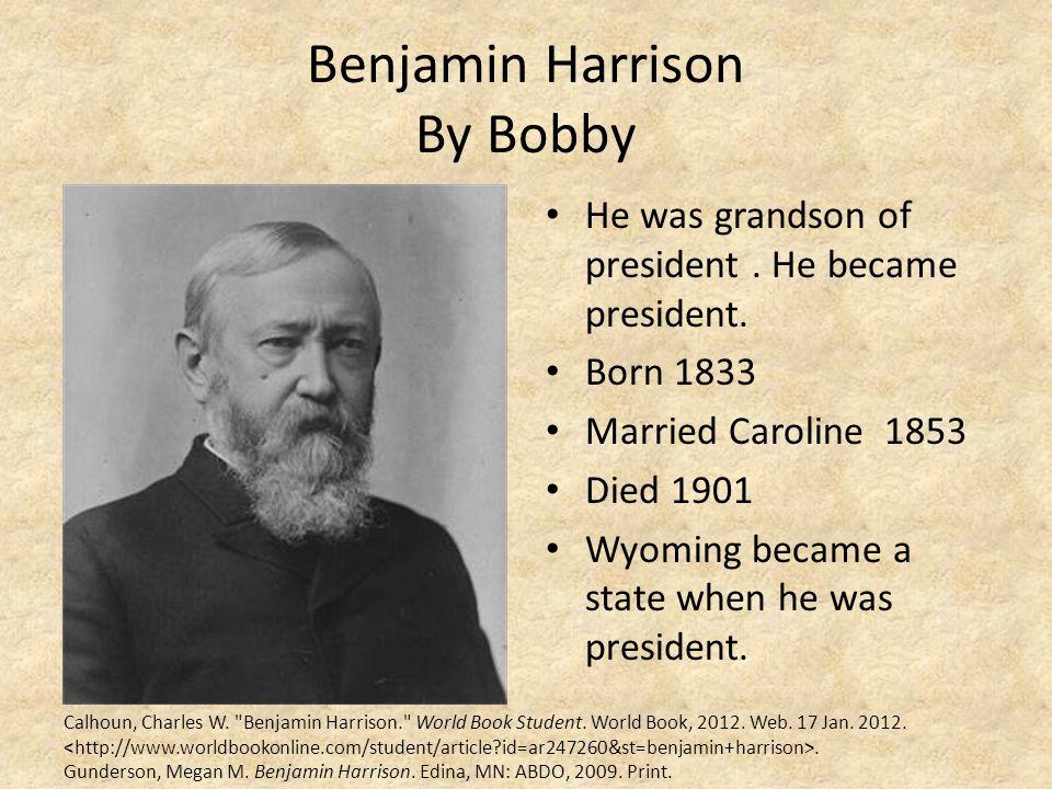 Benjamin Harrison By Bobby