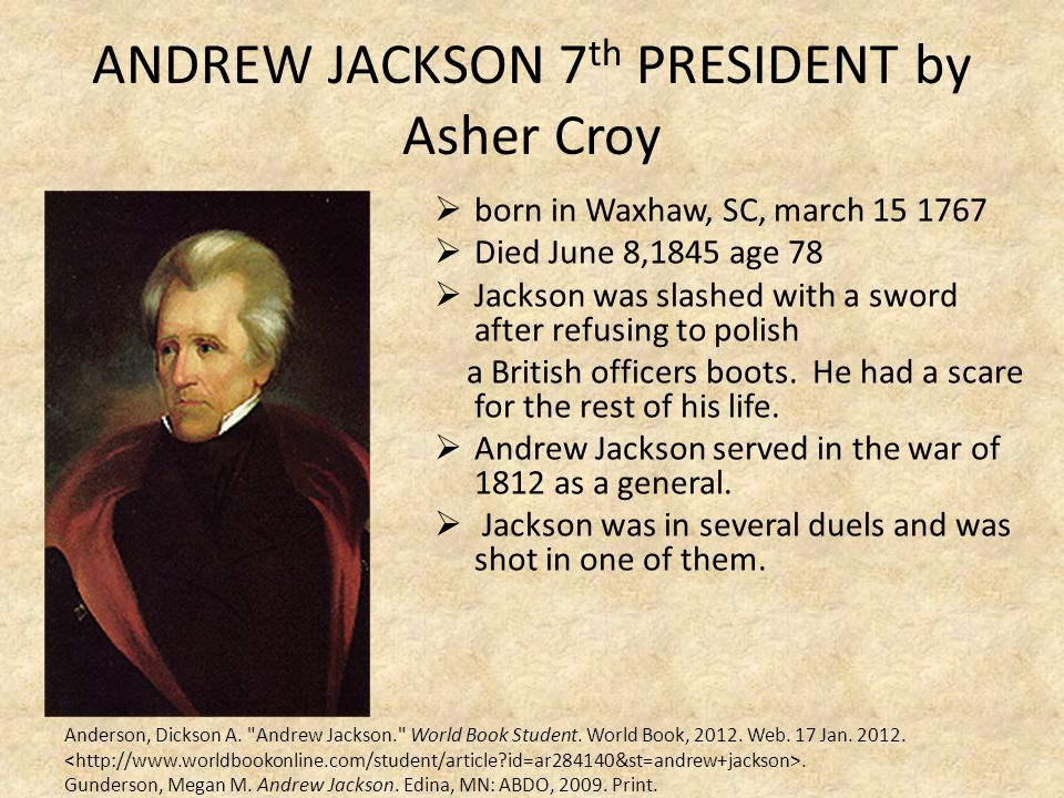ANDREW JACKSON 7th PRESIDENT by Asher Croy