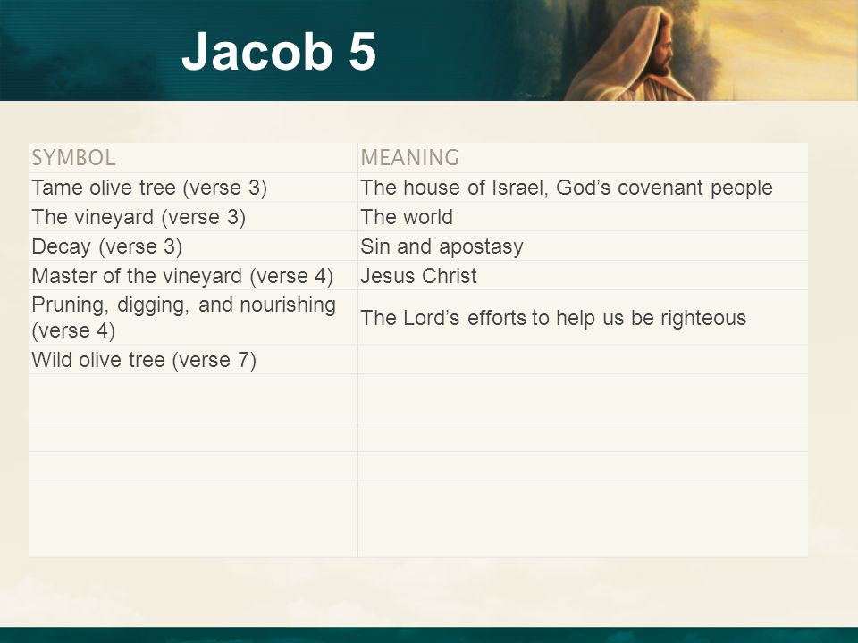Jacob 5 SYMBOL MEANING Tame olive tree (verse 3)