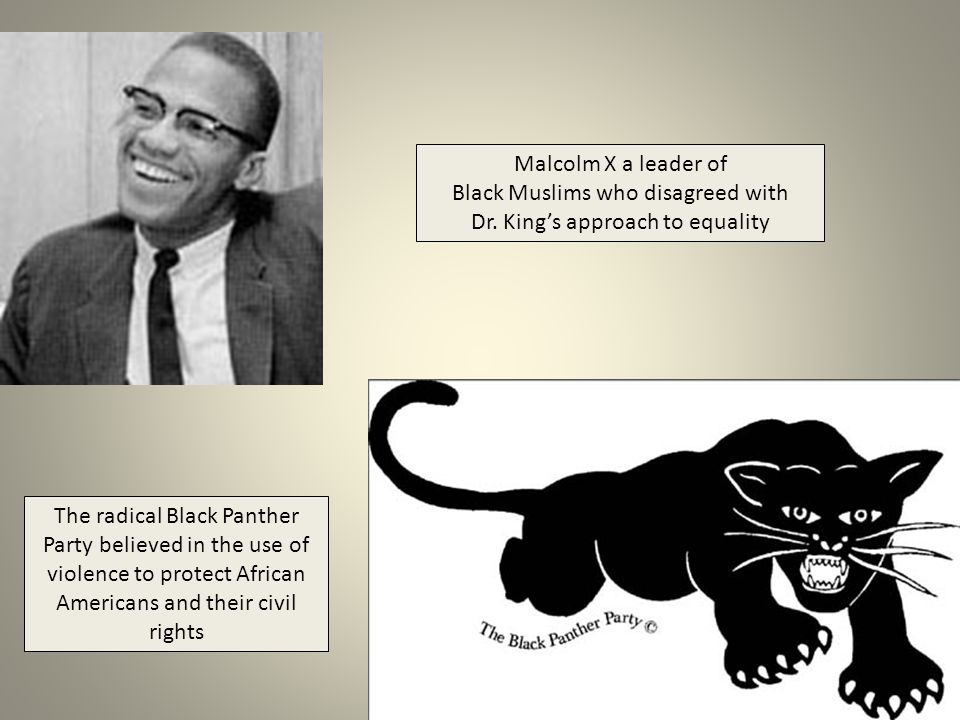 Black Muslims who disagreed with Dr. King's approach to equality