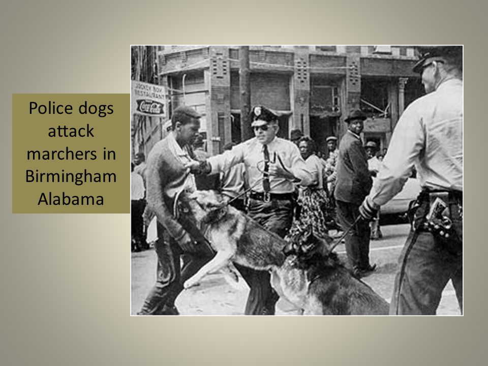 Police dogs attack marchers in Birmingham Alabama