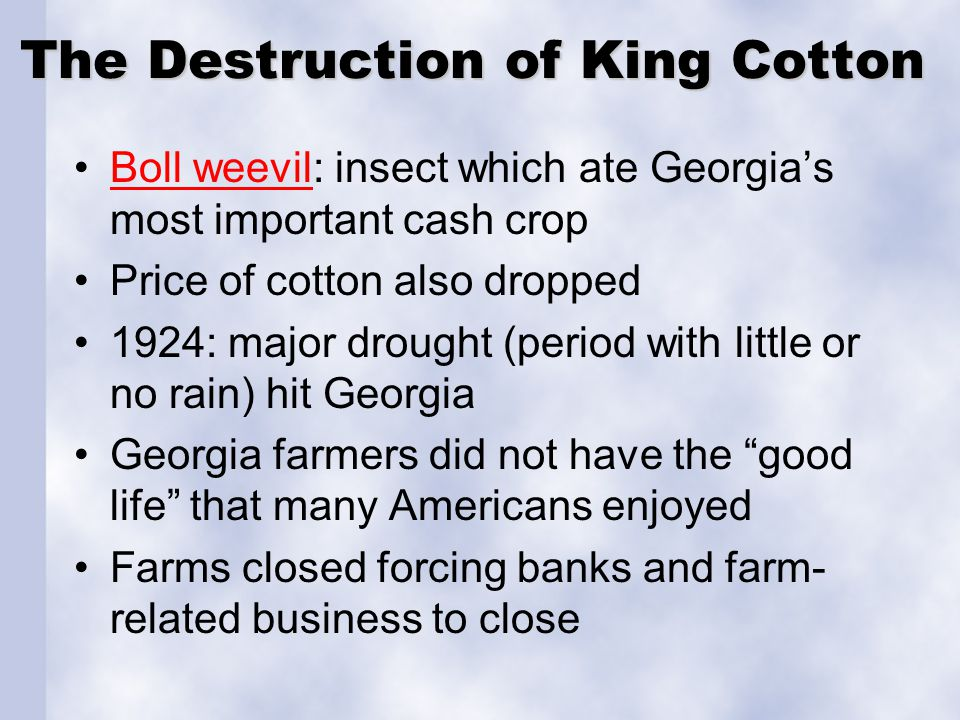 The Destruction of King Cotton
