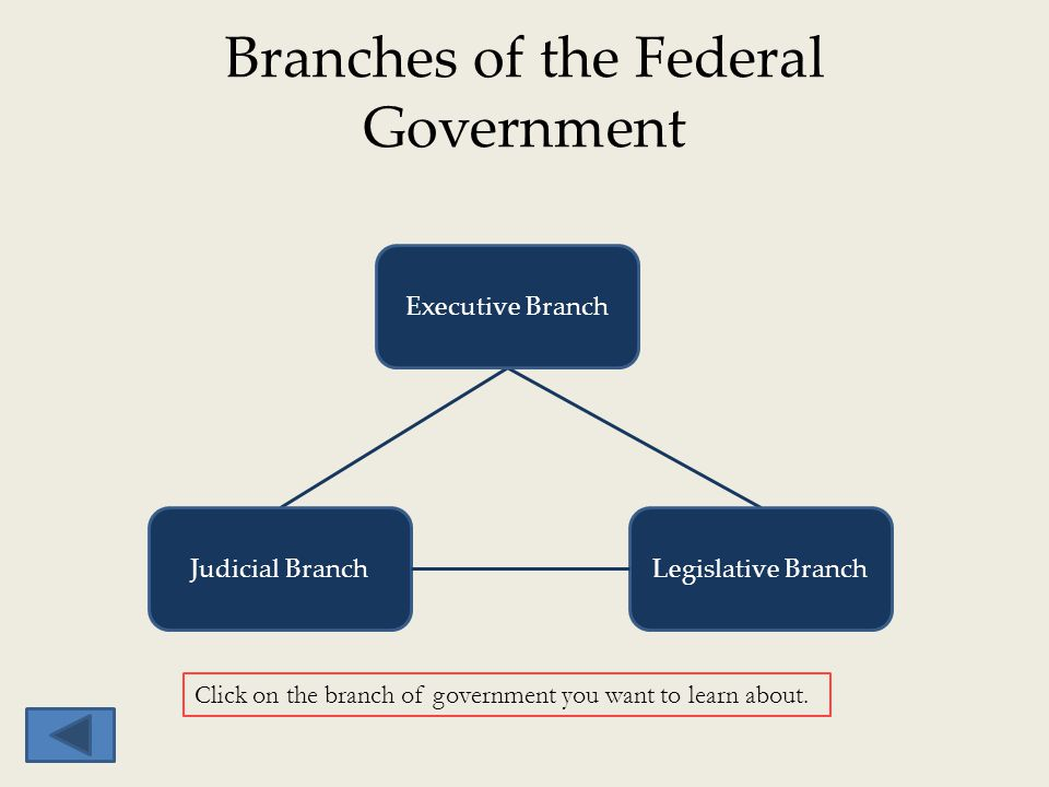 Branches of the Federal Government