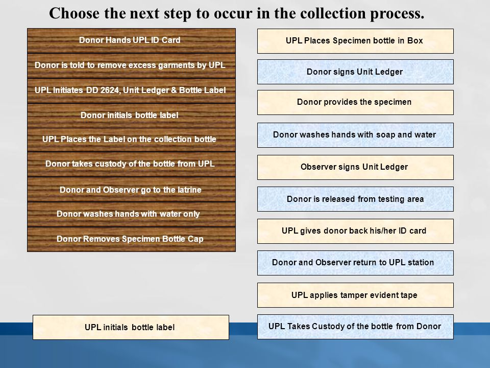 Choose the next step to occur in the collection process.