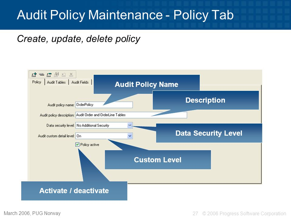 Audit Policy Maintenance - Policy Tab