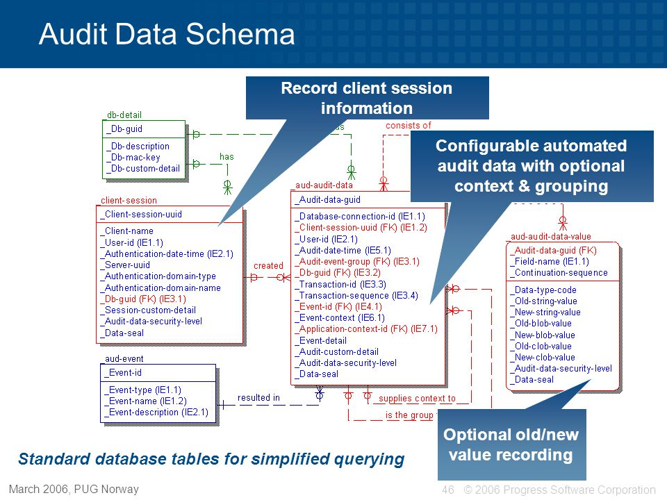 Audit Data Schema Record client session information