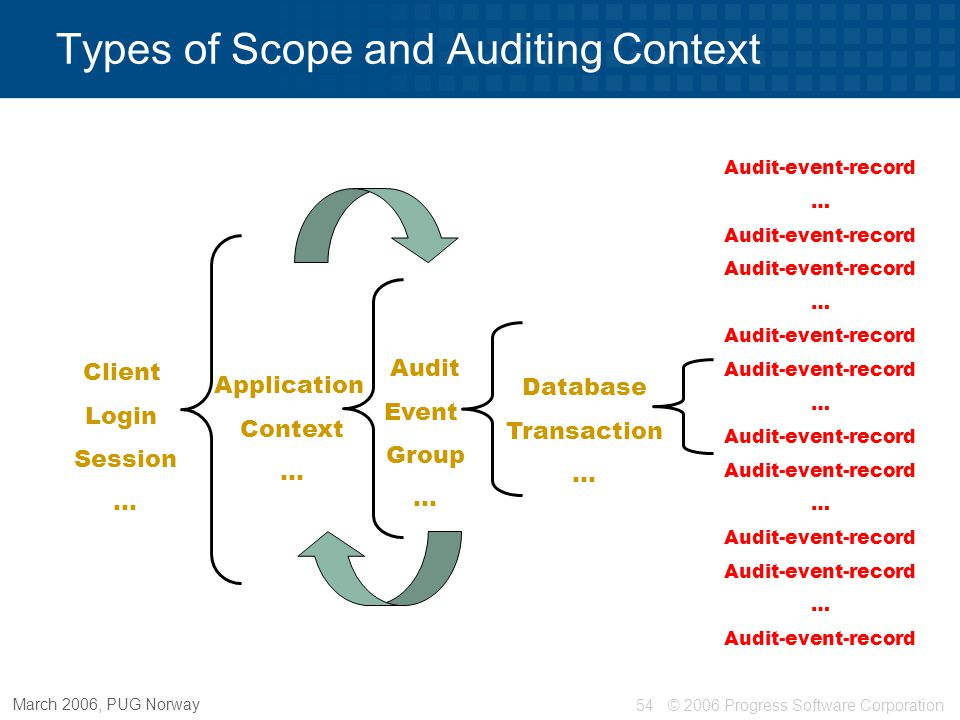 Types of Scope and Auditing Context