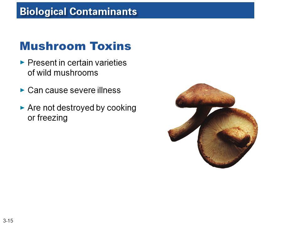 Mushroom Toxins Present in certain varieties of wild mushrooms