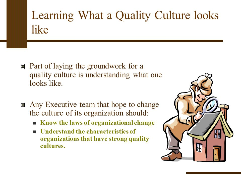 Learning What a Quality Culture looks like