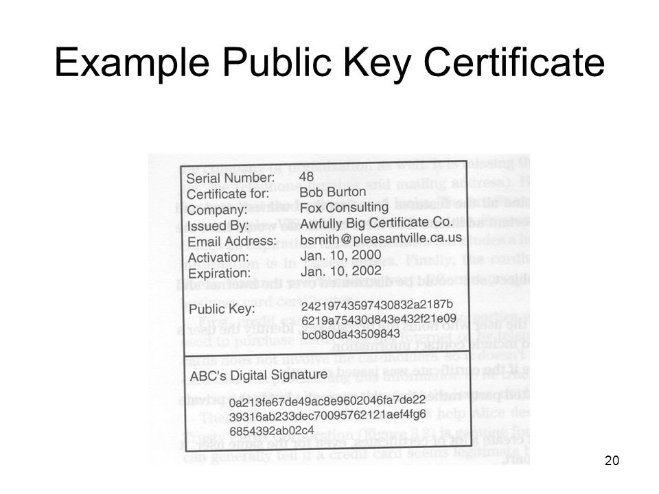 Example Public Key Certificate