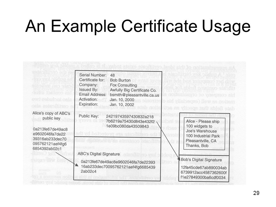 An Example Certificate Usage