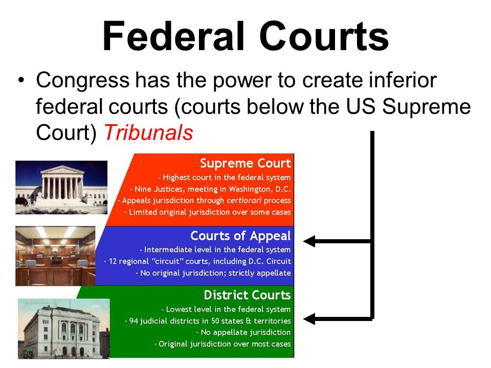 Federal Courts Congress has the power to create inferior federal courts (courts below the US Supreme Court) Tribunals.