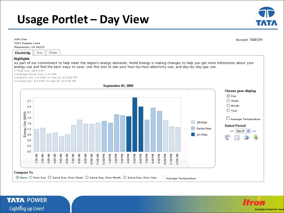 Usage Portlet – Day View