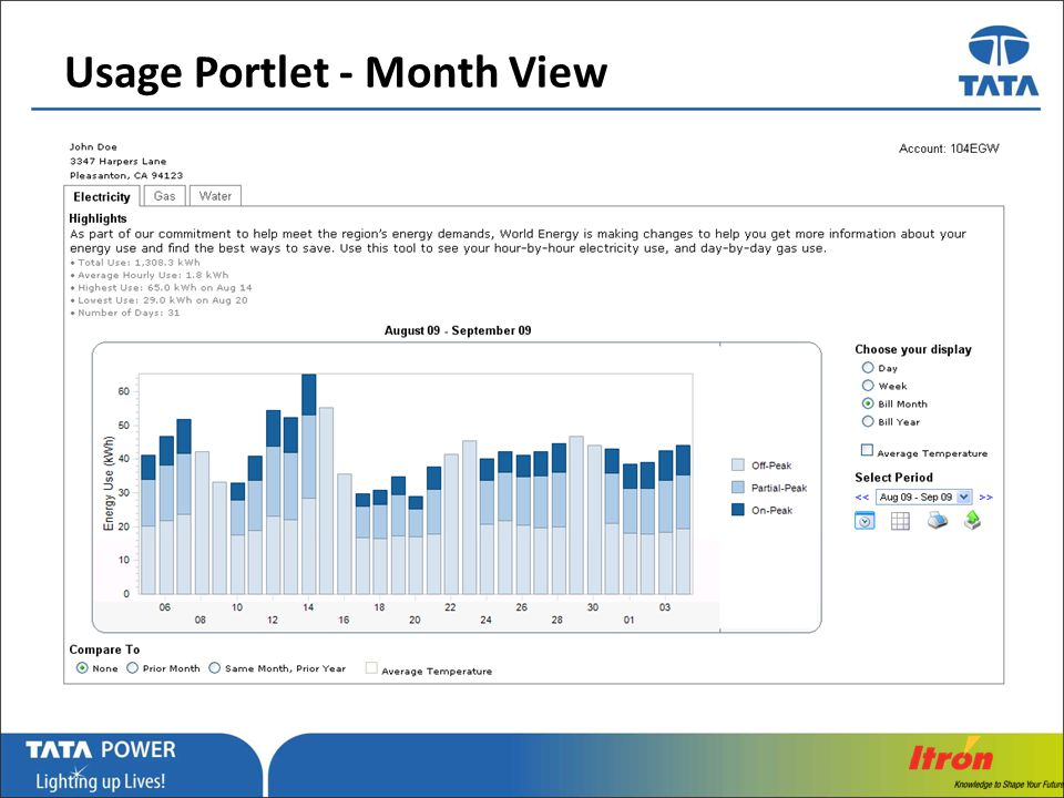 Usage Portlet - Month View