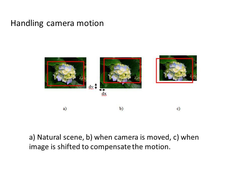 Handling camera motion