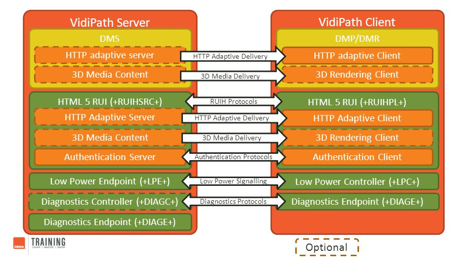 VidiPath Server VidiPath Client Optional DMS DMP/DMR