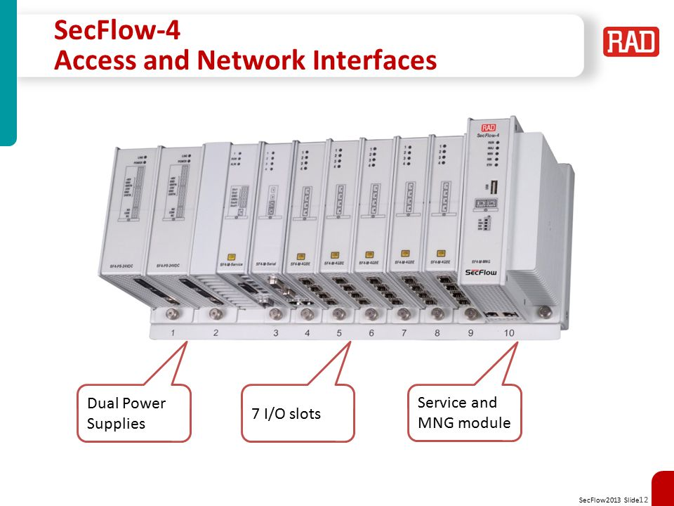 SecFlow-4 Access and Network Interfaces