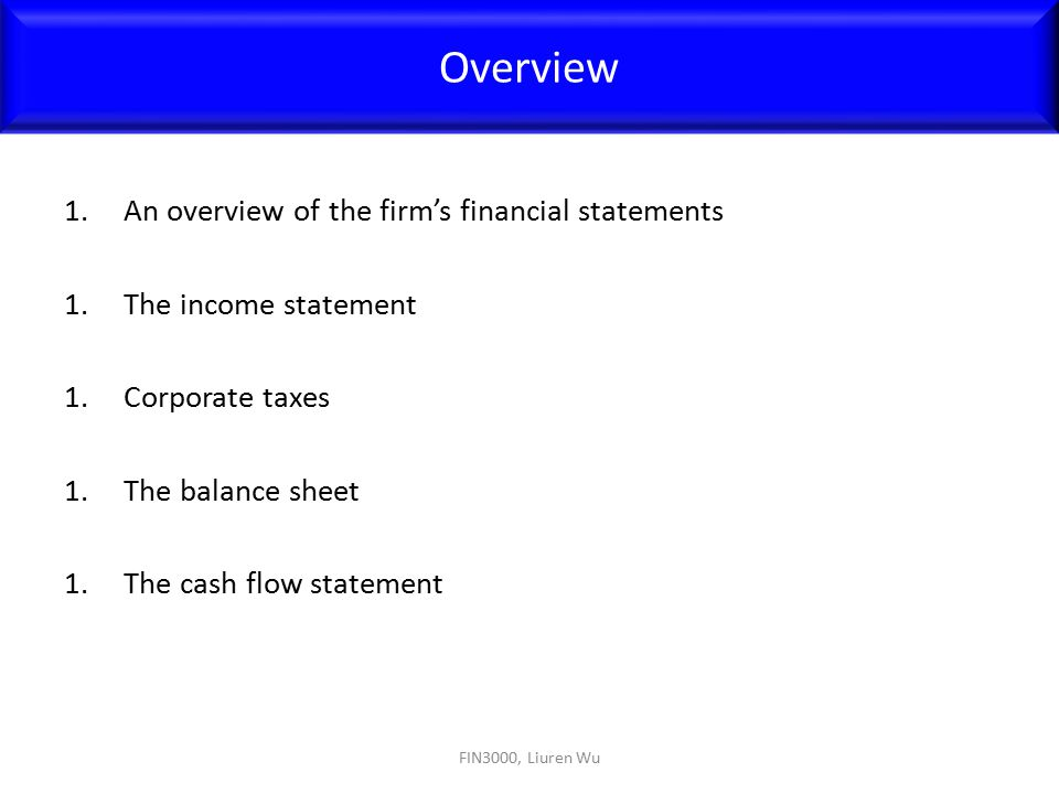 Overview An overview of the firm's financial statements