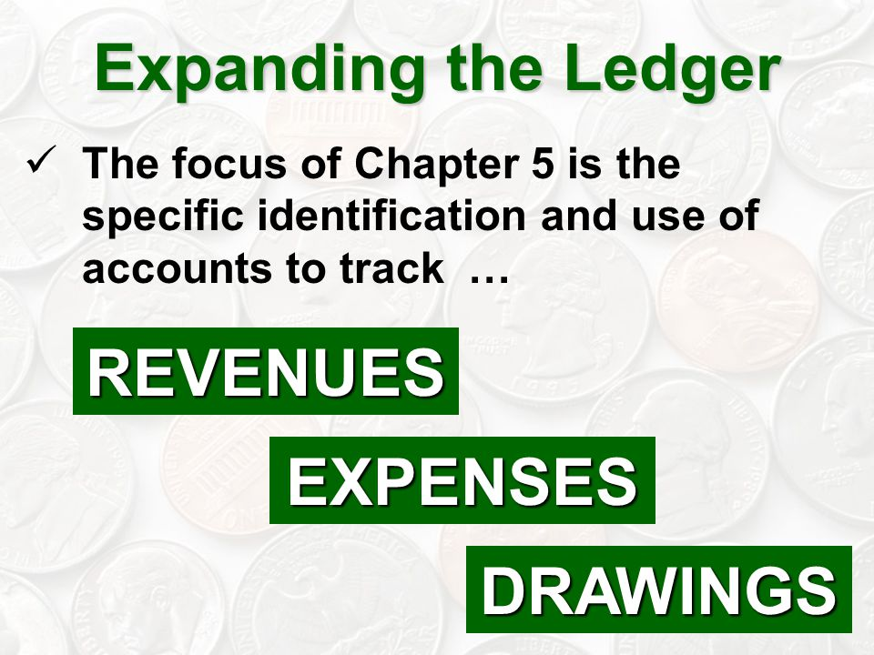 Expanding the Ledger REVENUES EXPENSES DRAWINGS
