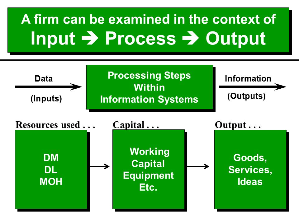 A firm can be examined in the context of Input  Process  Output
