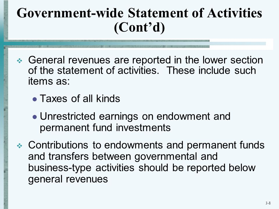 Government-wide Statement of Activities (Cont'd)
