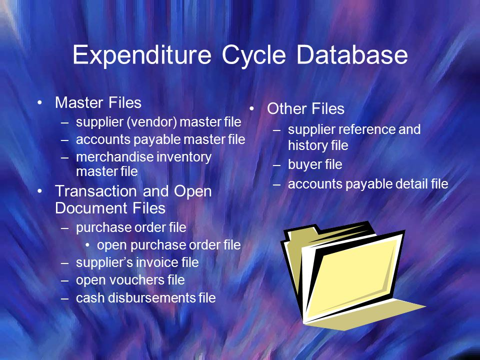 Expenditure Cycle Database