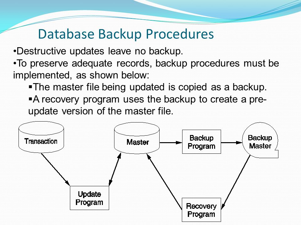 Database Backup Procedures