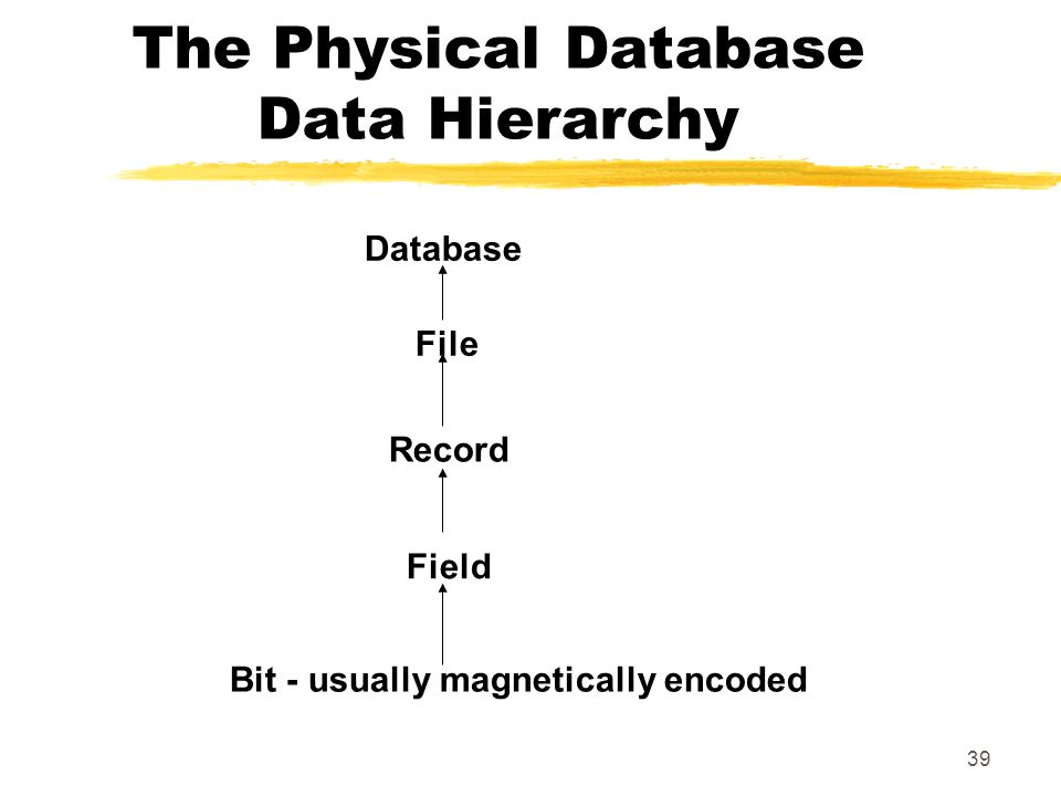 The Physical Database Data Hierarchy