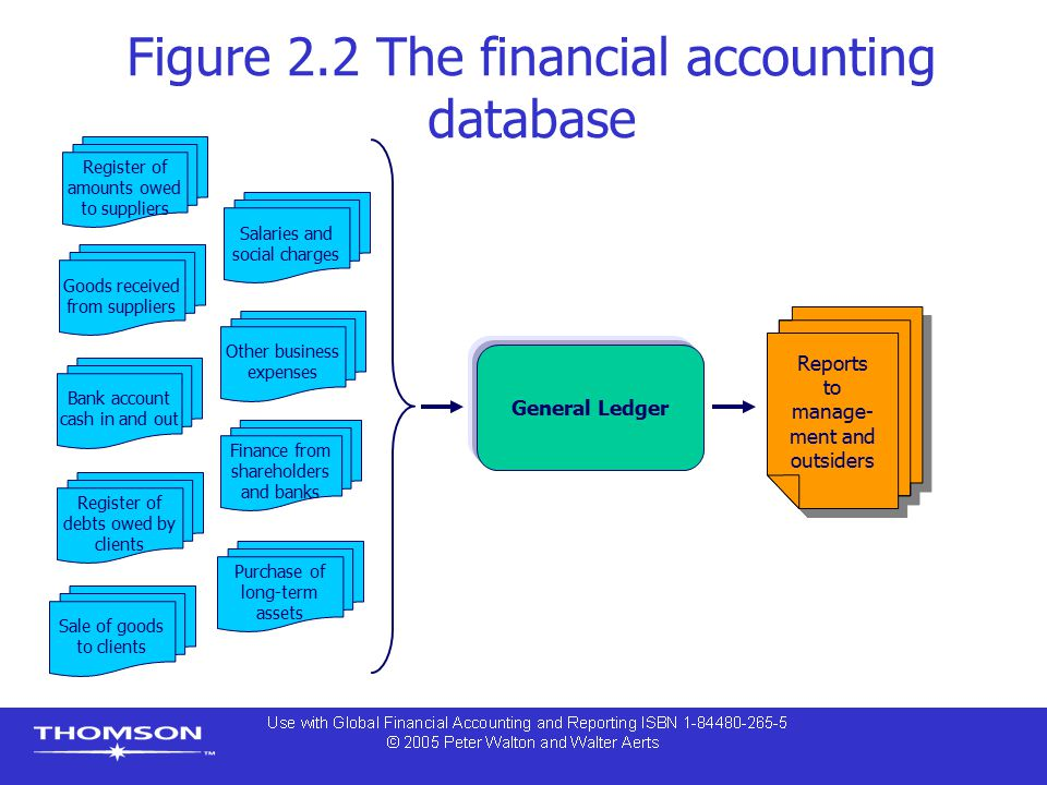 Figure 2.2 The financial accounting database