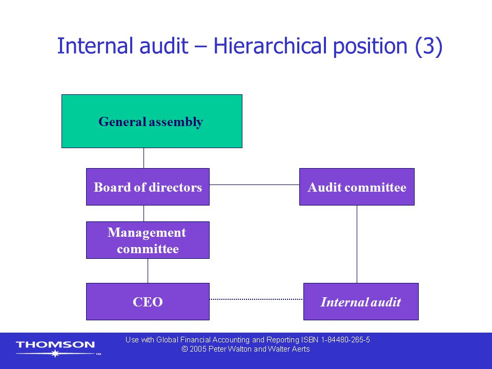 Internal audit – Hierarchical position (3)