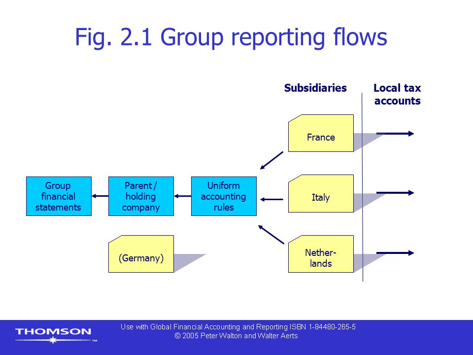 Fig. 2.1 Group reporting flows