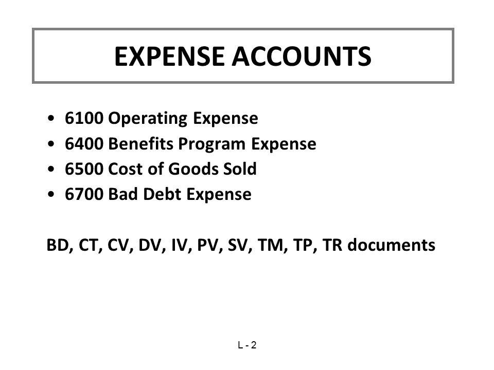 EXPENSE ACCOUNTS 6100 Operating Expense 6400 Benefits Program Expense
