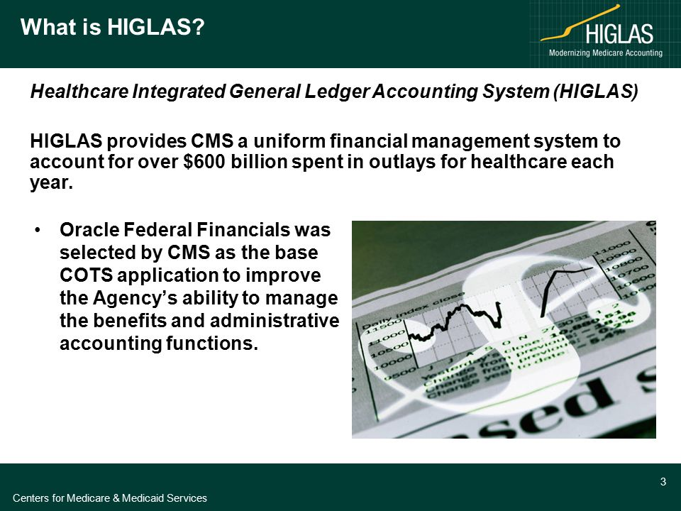 HIGLAS Program Vital Statistics