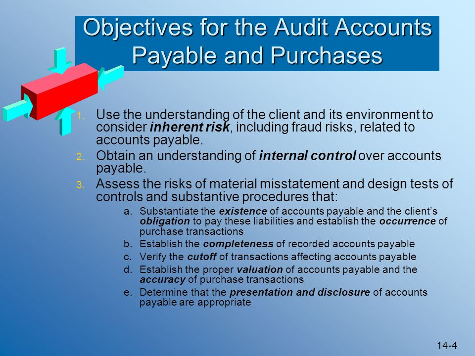 Objectives for the Audit Accounts Payable and Purchases
