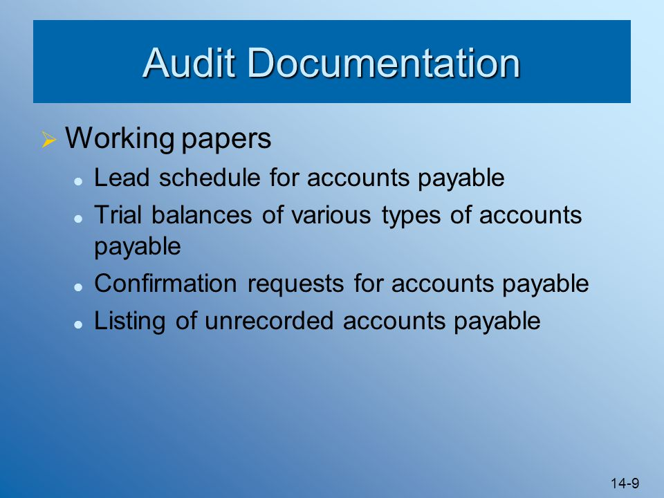 Audit Documentation Working papers Lead schedule for accounts payable
