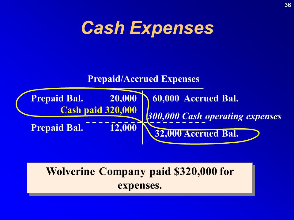 Prepaid/Accrued Expenses Wolverine Company paid $320,000 for expenses.