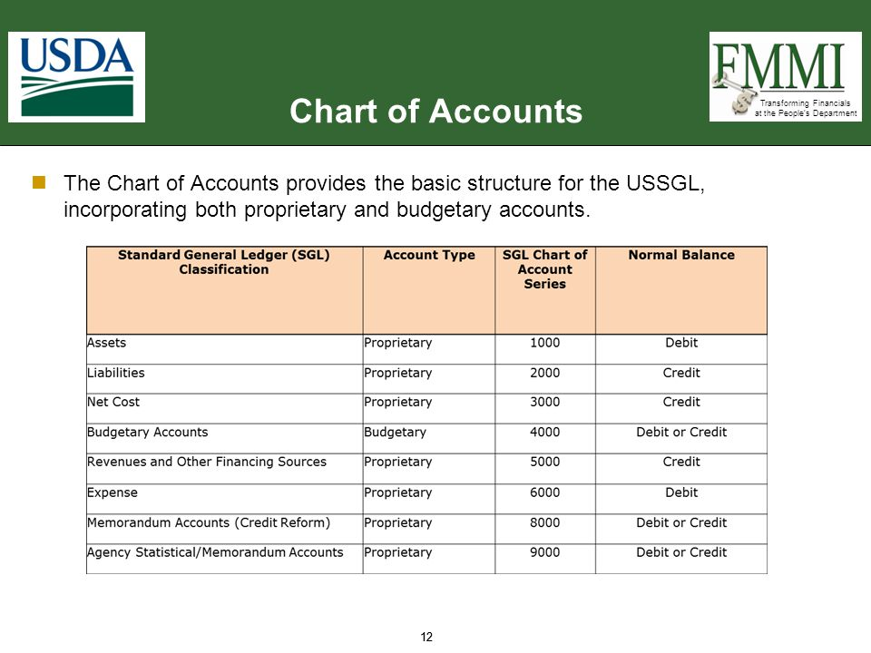 Chart of Accounts The Chart of Accounts provides the basic structure for the USSGL, incorporating both proprietary and budgetary accounts.
