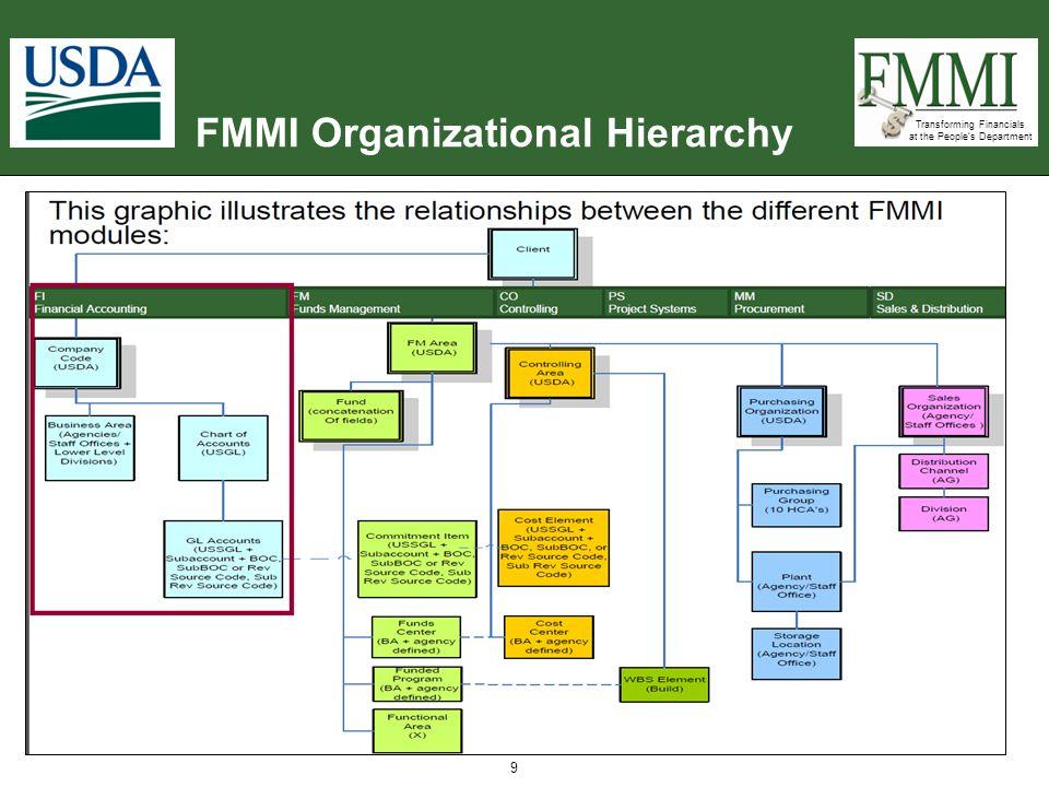 FMMI Organizational Hierarchy
