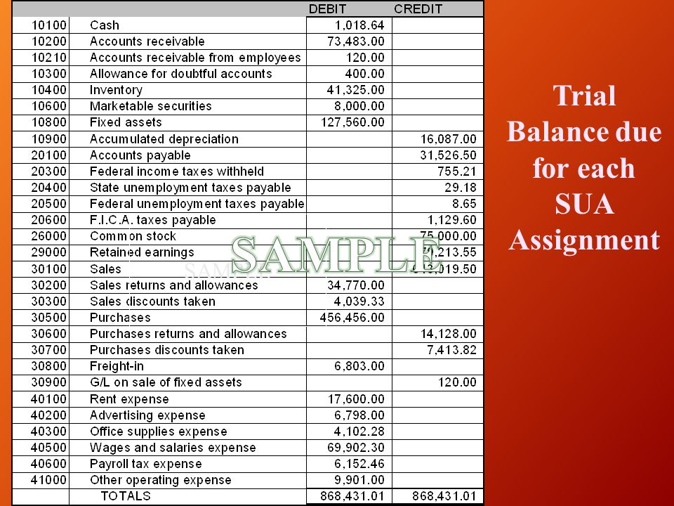 Trial Balance due for each SUA Assignment