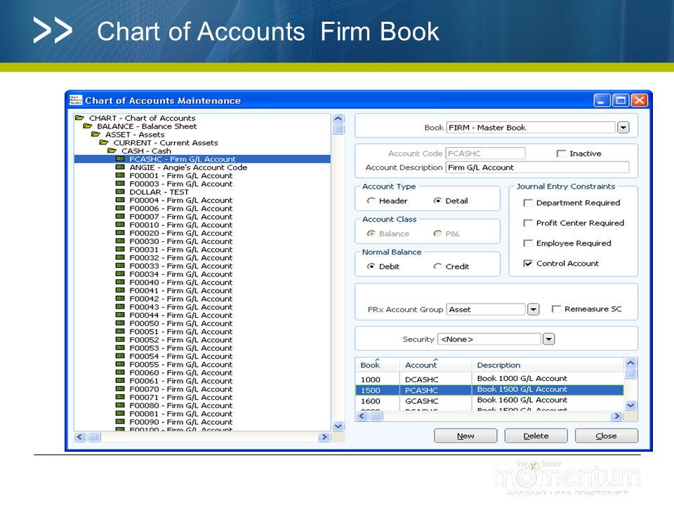 Chart of Accounts Firm Book