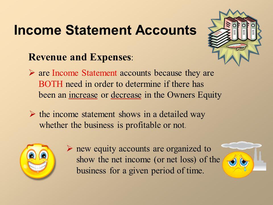 Income Statement Accounts